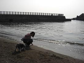海、また、来る?