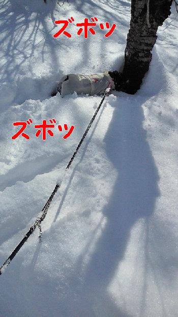 20140209102雪.jpg
