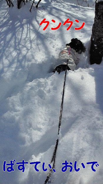 20140209103雪.jpg