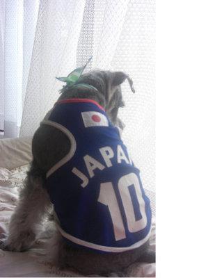 日本の勝利をかみしめています