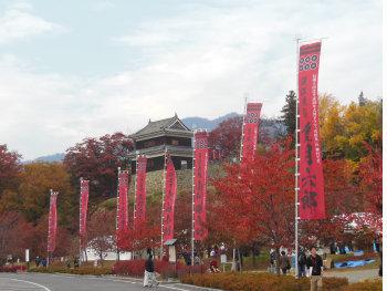 上田城けやき並木紅葉まつり0