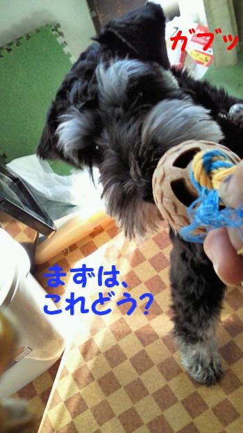 おもちゃ1.jpg