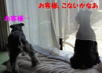 お仕事.jpg