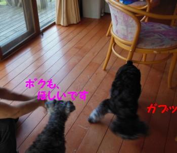 お宿3.jpg