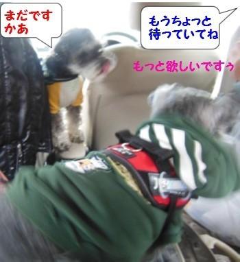 かんてんぱぱ5.jpg