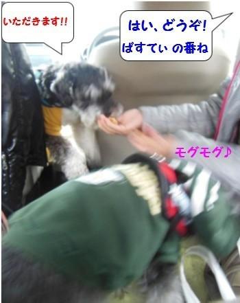 かんてんぱぱ6.jpg