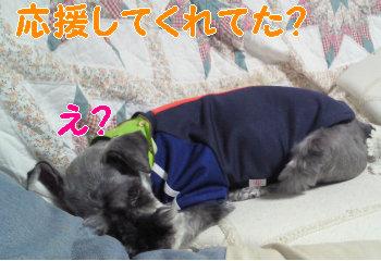 なんのこと.jpg