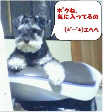 ばすてぃ3.jpg