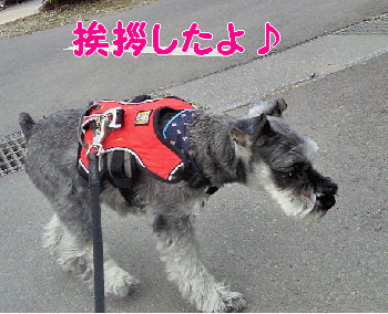 ぷー.jpg