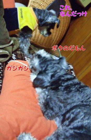 イタズラ4.jpg