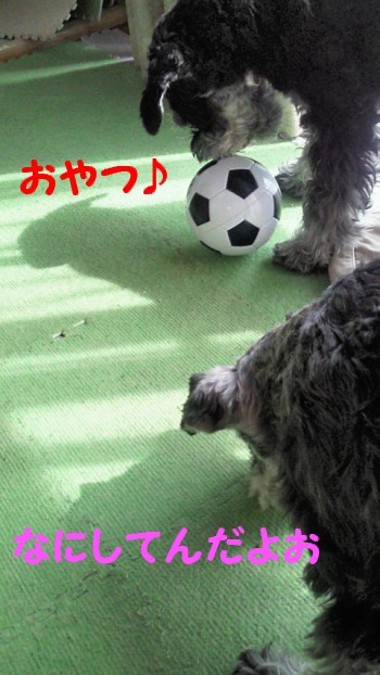 サッカーボール1.jpg