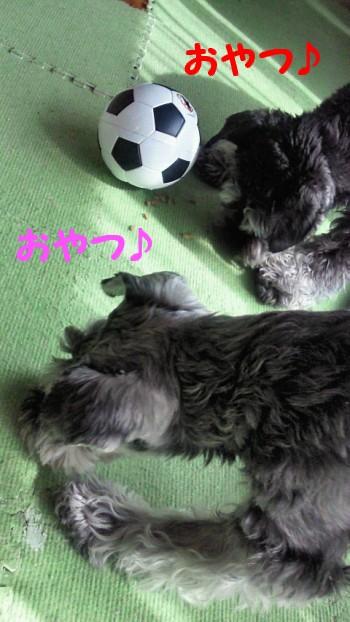 サッカーボール2.jpg