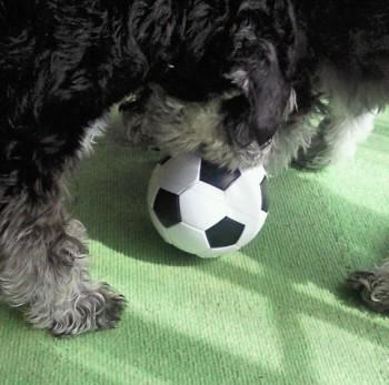 サッカーボール3.jpg