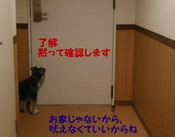 ホテル13.jpg