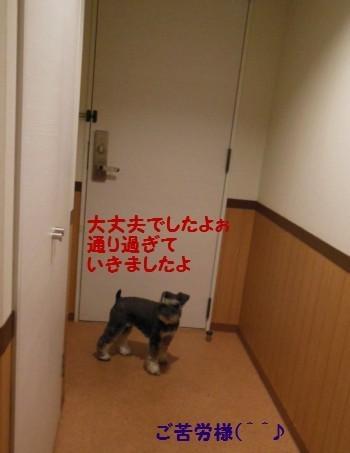 ホテル14.jpg