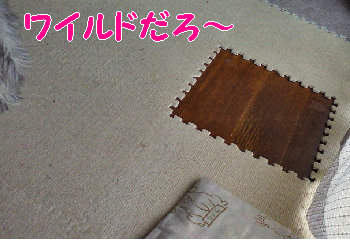 ワウルドおりばー.jpg
