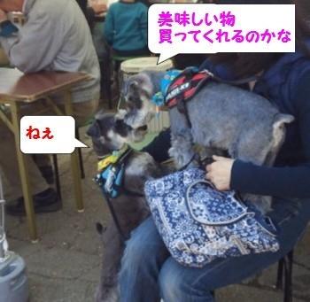 上田城址公園花見10.jpg
