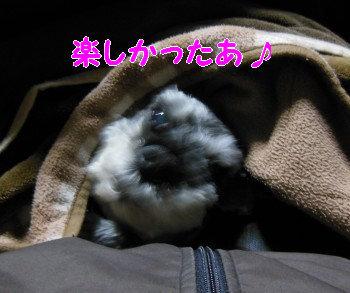 八ヶ岳13.jpg