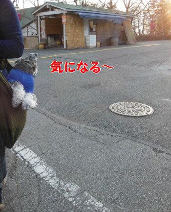 八ヶ岳3.jpg