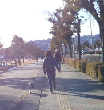 散歩8.jpg