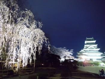 松本城25.jpg