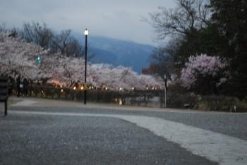 松本城0.jpg