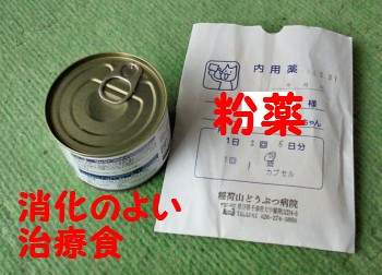 治療食&投薬.jpg