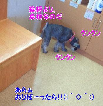 病院22.jpg