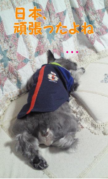 眠いのだ.jpg