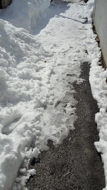 融雪.jpg