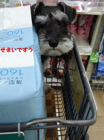 買い物2.jpg