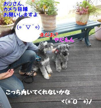 野尻湖27.jpg