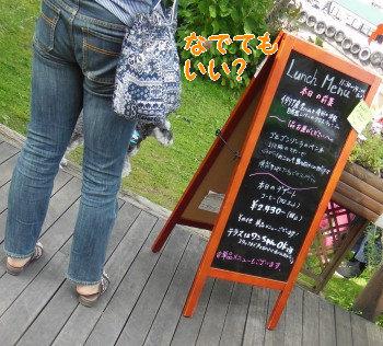 野尻湖28.jpg