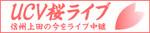 上田の桜の今が見れますよ!