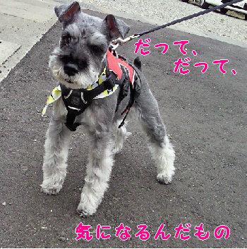 おりばーの言い分.jpg