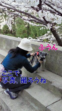 写真撮影場でjpg.JPG