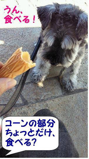 食べたい、おりばー.jpg